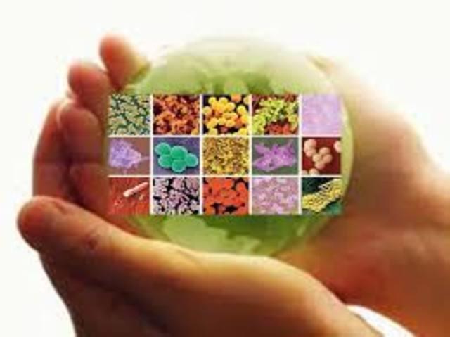 Microbios extraídos