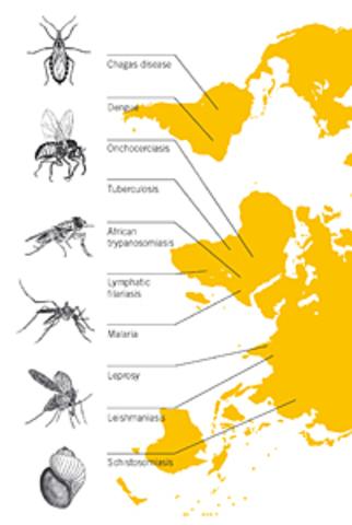 Programa Especial de Investigaciones y Enseñanzas sobre Enfermedades Tropicales