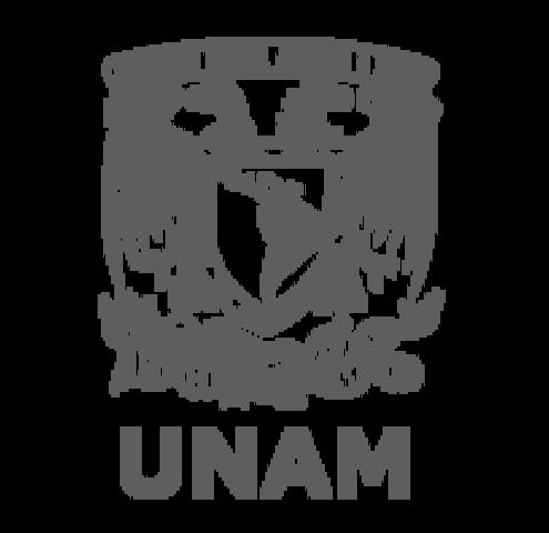 Posgrado Psicologìa de la Salud en la UNAM