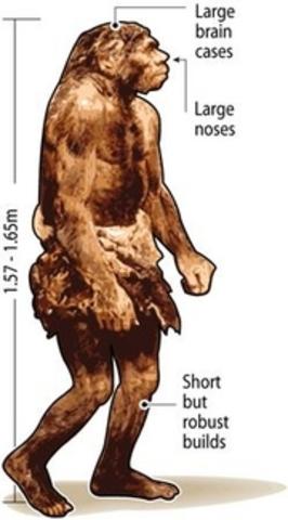 200,000 B,C Neanderthal