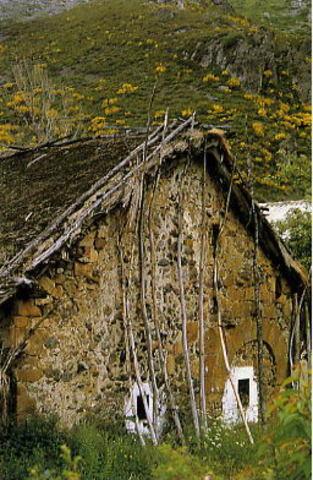 Surge la construcción de viviendas