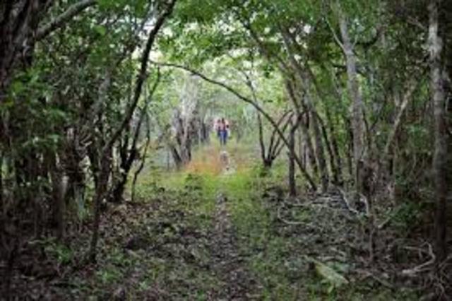 Reserva Ecologica del Eden.