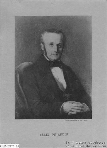 Felix Dujarden