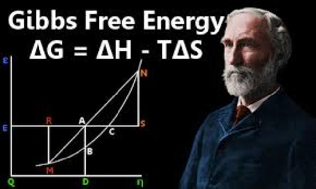 Profesor de Física Matemática