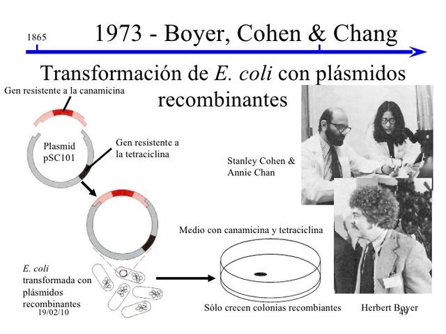 Creación de  técnica de ADN recombinable