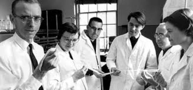 Cuerpo internacional de ingeniería biológica y médica