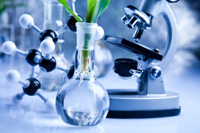 Día Internacional del Bioingeniero