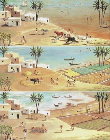 Aparición Agricultura en Egipto