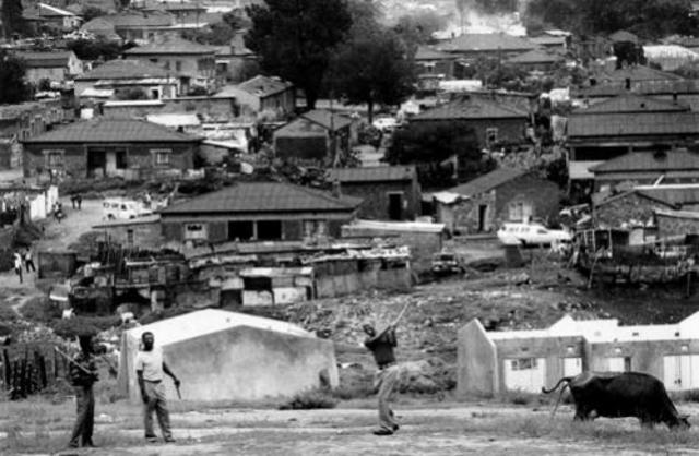 Native (Black) Urban Areas Act No 21: 1923