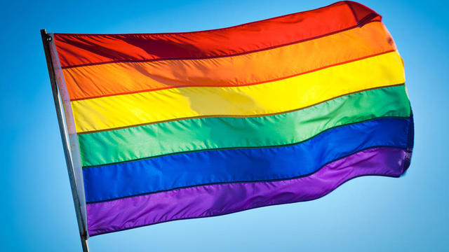REFERÈNDUM HOMOSEXUAL