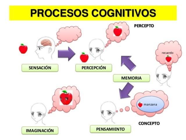 """""""Memoria y cognición."""""""