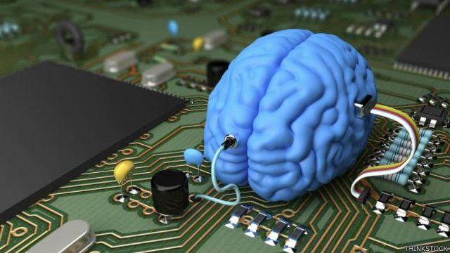 Analogía computador-cerebro. Warren.