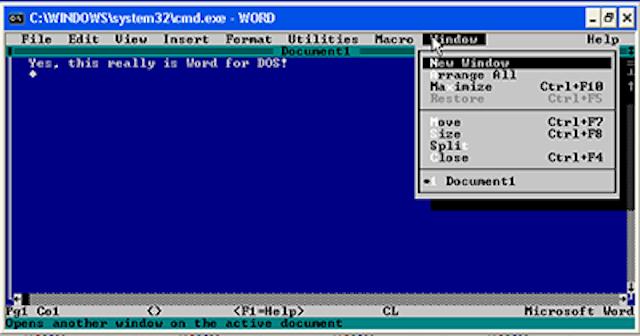 Aparece el SO MS de Windows.