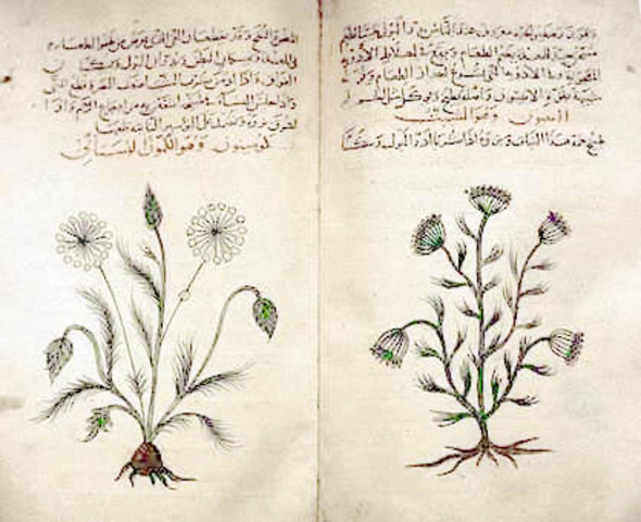 Ancient Egypt - Medicine