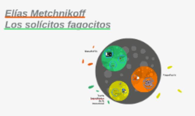 Metchnikoff: Teoría Fagocítica de la inmunidad