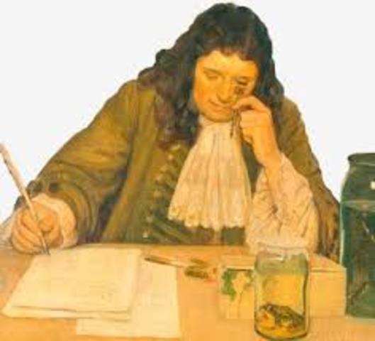 Leeuwenhoek: Vio el primero microscopio simple en lupa.