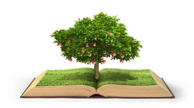 UE libro verde sobre RSE