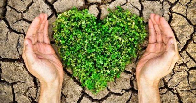 Environmental Education Forever