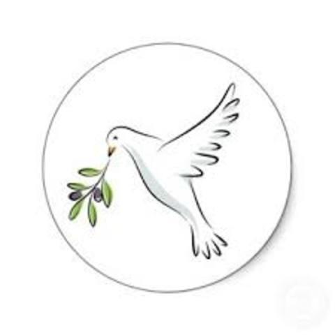 Olive-Brach Petition