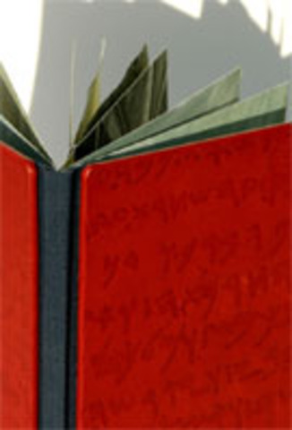 Bonnie Stahlecker   Plainfield, IN   Versatile Binding with Embellished Leather Cover