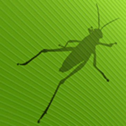 erste Version von Grasshopper (Explicit History)