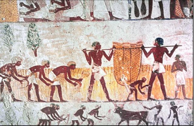 De Egyptise voorraad schuren worden geplunderd
