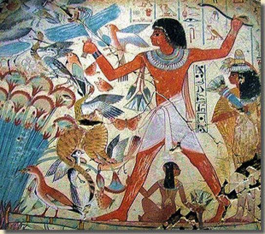 Egypte wilde meer grond