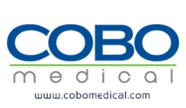 Planeación de la Visita Empresarial a Cobo Asociados.