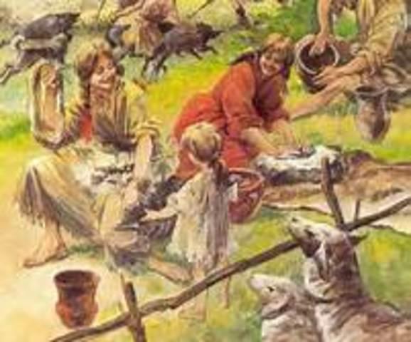 Het begin van de landbouw