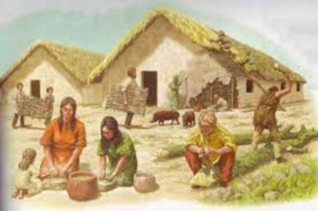 Start van de landbouw revolutie