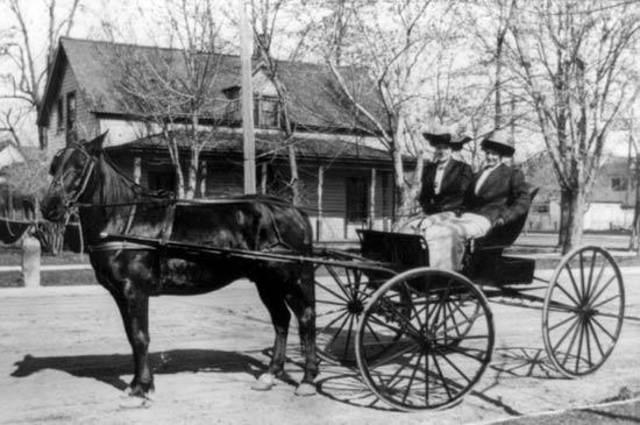 Первая система общественного транспорта