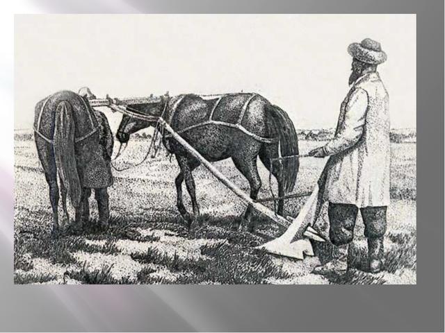 Калмыки-земледельцы
