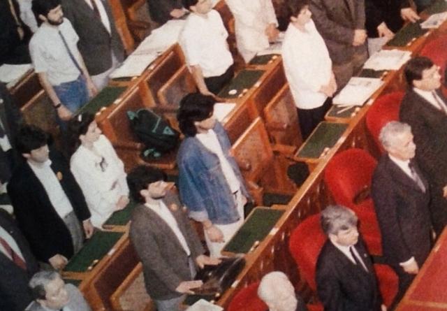 A Fidesz Parlamentbe való bejutása