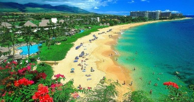 Гавайские острова.     (испанцы