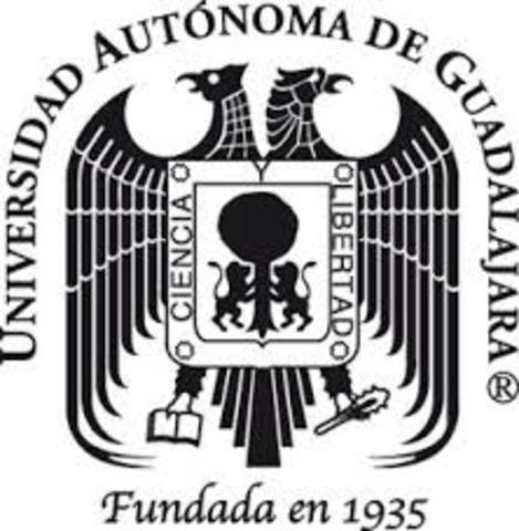 La Tutoría en México Licenciatura