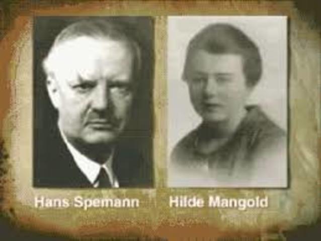 Hans Spemann y Hilde Mangold