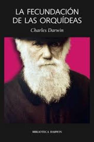 Polinización de orquídeas - Darwin