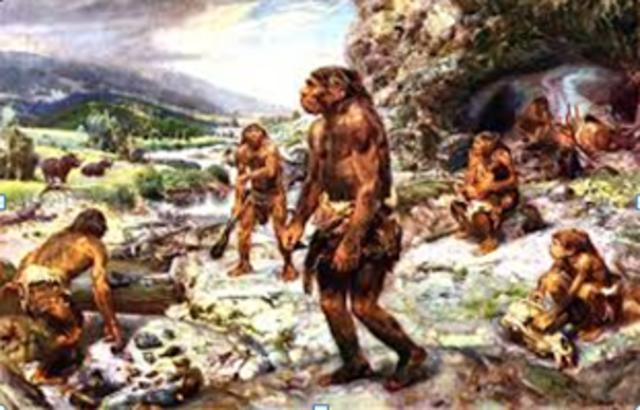 Descubrimiento de restos de neandertales
