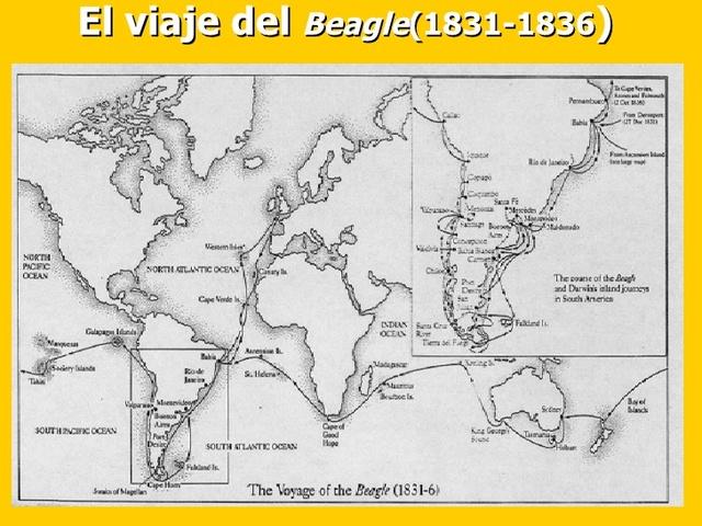 Viaje de Beagle