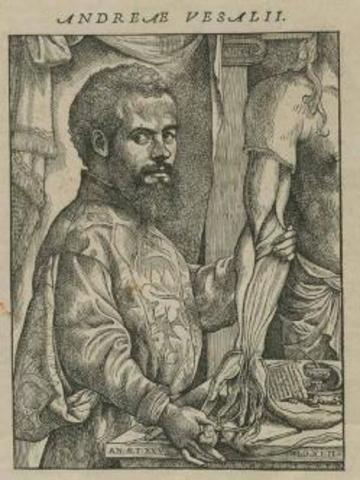 Andres Vesalio
