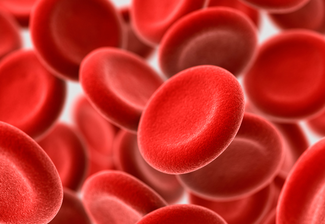 Anton van Leeuwenhoek saw red blood cells for the first time.