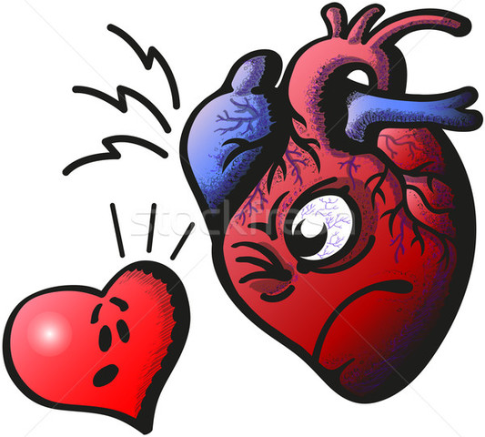William Harvey showed that the heart acted as a pump to circulate blood throughout the body.