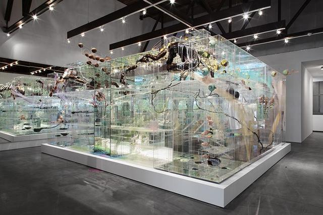 David Altmejd's Installations
