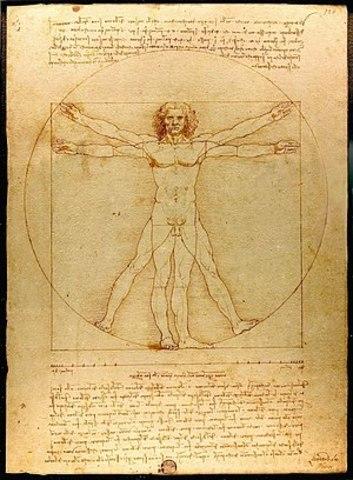 Proportions of the Human Figure (Vitruvian Man)
