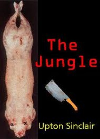 The Jungle is published