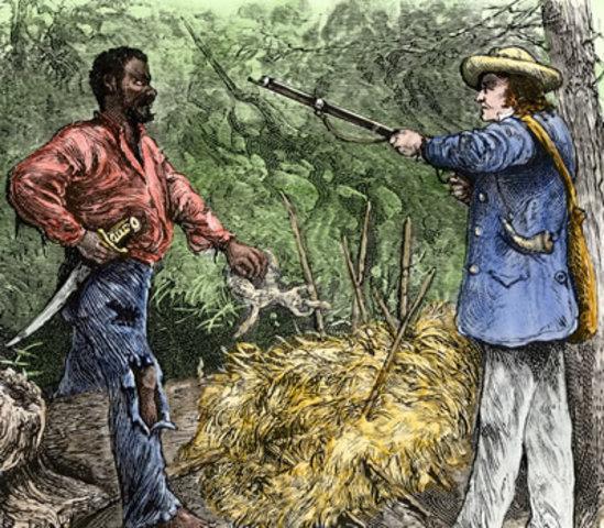 Turner's Rebellion