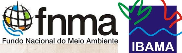 Criação do Instituto Brasileiro do Meio Ambiente (IBAMA), e do Fundo Nacional de Meio Ambiente (FNMA)