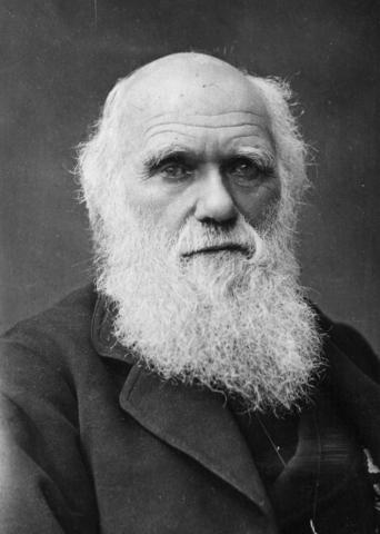 Darwin Born in England
