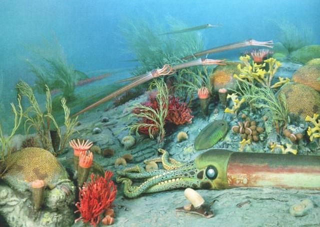 Extinción masiva del Ordovícico-Silúrico