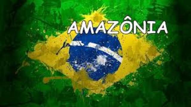 Publicação dos livros Amazônia